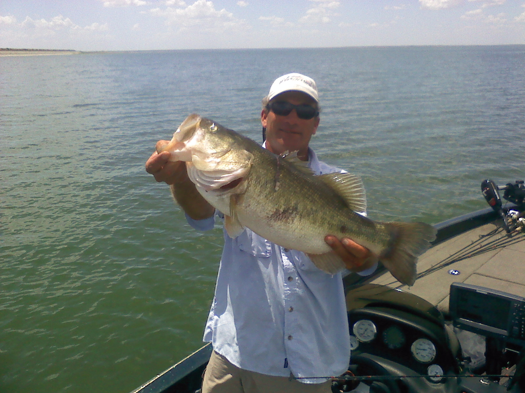 A nice large mouth bass caught on a guided fishing trip
