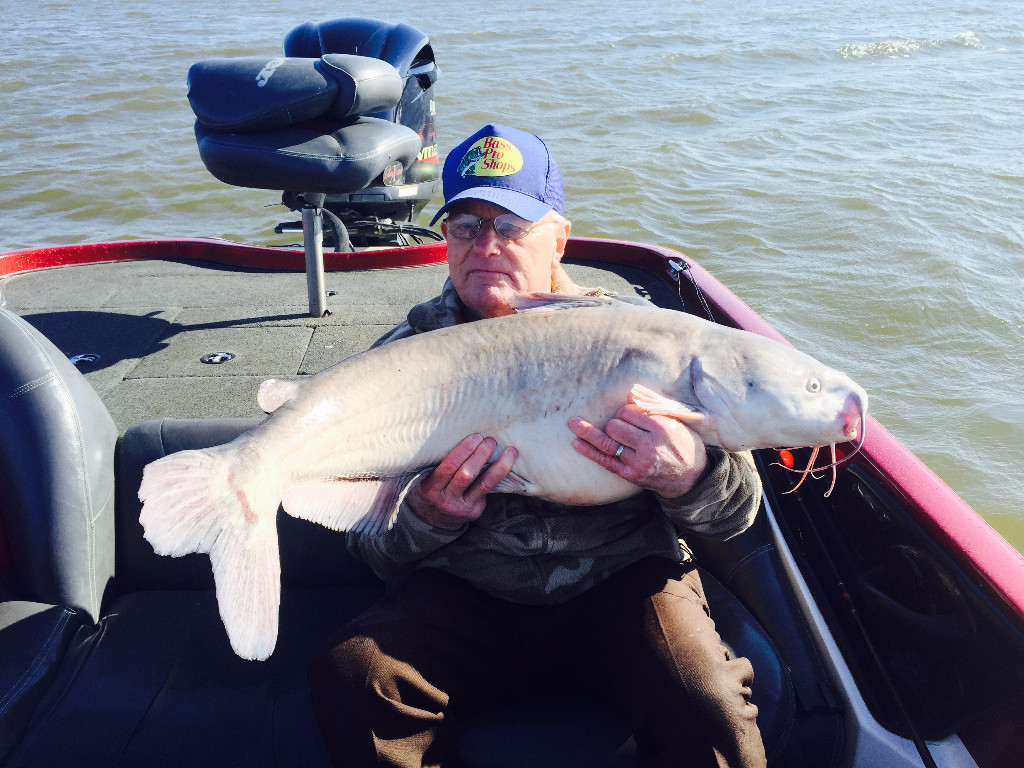 Monster Lake Lewisville Blue Cat