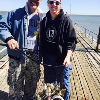 Limits on Lake Lewisville Sand Bass - 3/13/2016