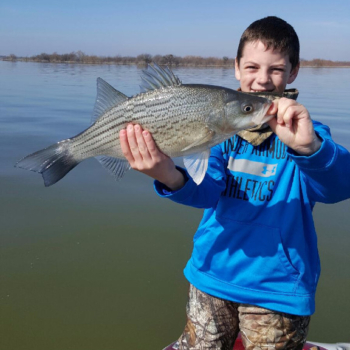 Kids Fishing, trophy hybrid bass from Lewisville Lake
