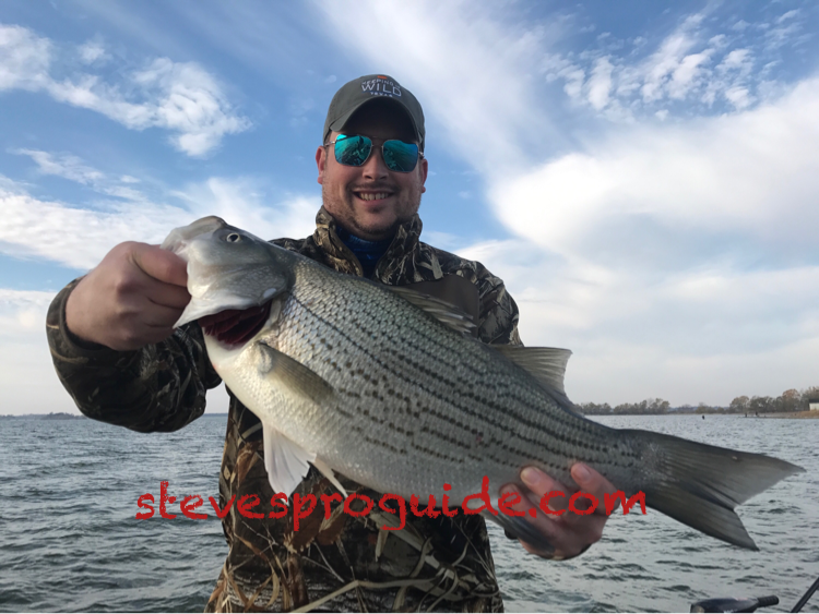 Fishing guide texas lake lewisville dallas grapevine for Lake lewisville fishing guide